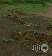 Land For Lease: 6200sqm On 2nd Avenue Ikoyi | Land & Plots for Rent for sale in Lagos State, Ikoyi