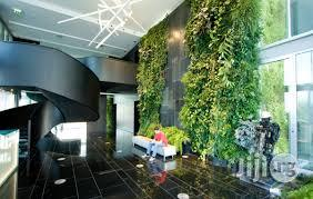Wall Creeping Plant For Your Walls At Home | Garden for sale in Lagos State, Ikeja