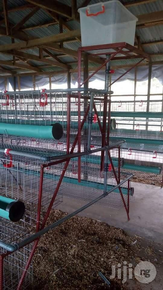 Archive: Battery Cages For Birds & Layers Birds.