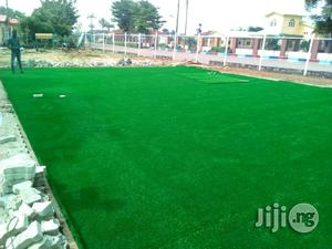 Buy Artificial Carpet Grass   Garden for sale in Lagos State, Ikeja