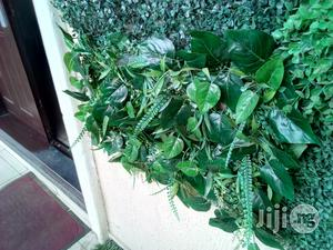 Wall Decorate With Artificial Plants | Garden for sale in Lagos State, Ikeja