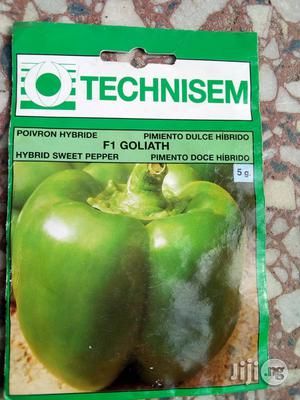 5g Goliath F1 Sweet Pepper (Green Pepper) Seed   Feeds, Supplements & Seeds for sale in Delta State, Warri