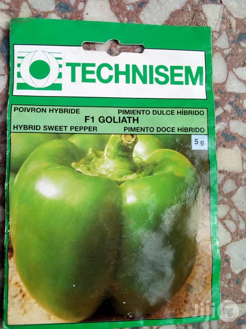 5g Goliath F1 Sweet Pepper (Green Pepper) Seed