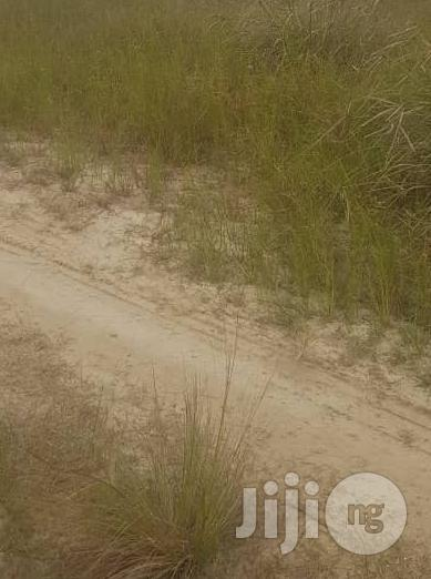 Archive: Half Plot of Land for Sale at Very Close to Unity Estate Ojodu