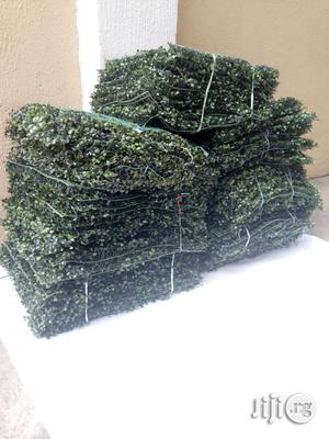 Artificial/Synthetic Wall Creeping Plants For Walls Design | Garden for sale in Lagos State, Ikeja