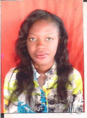 Seeking Work CV | Customer Service CVs for sale in Enugu State, Enugu