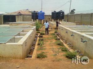 Fish Farming And General Agriculture | Classes & Courses for sale in Abuja (FCT) State, Kubwa