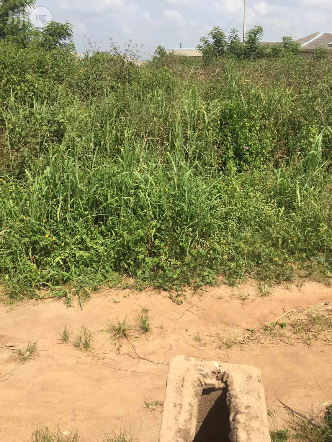 Plots Of Land Available For Sale In Ayegun-oleyo Opposite Adron Homes