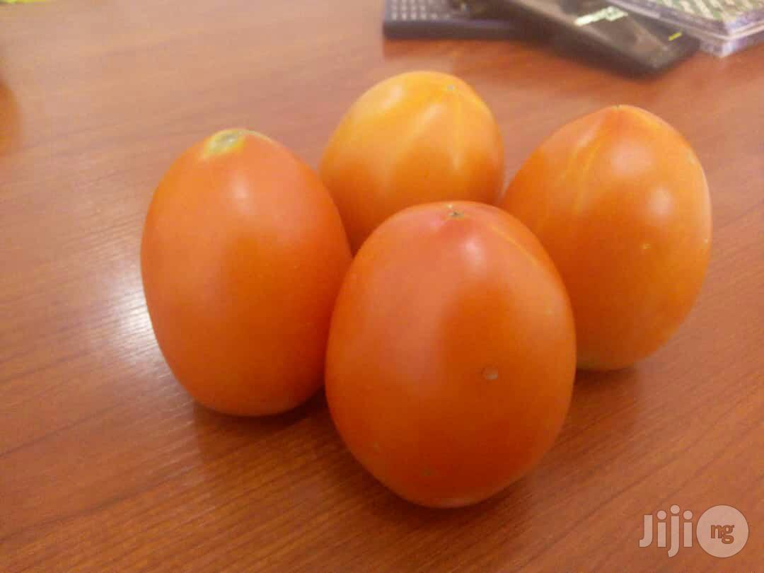 Supergro Liquid Organic Fertilizer | Feeds, Supplements & Seeds for sale in Isolo, Lagos State, Nigeria