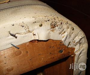 Bed Bug Fumigator Expert | Cleaning Services for sale in Lagos State, Alimosho