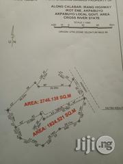 Surveyed Land at Ikot Ene, Akpabuyo   Land & Plots For Sale for sale in Cross River State, Akpabuyo