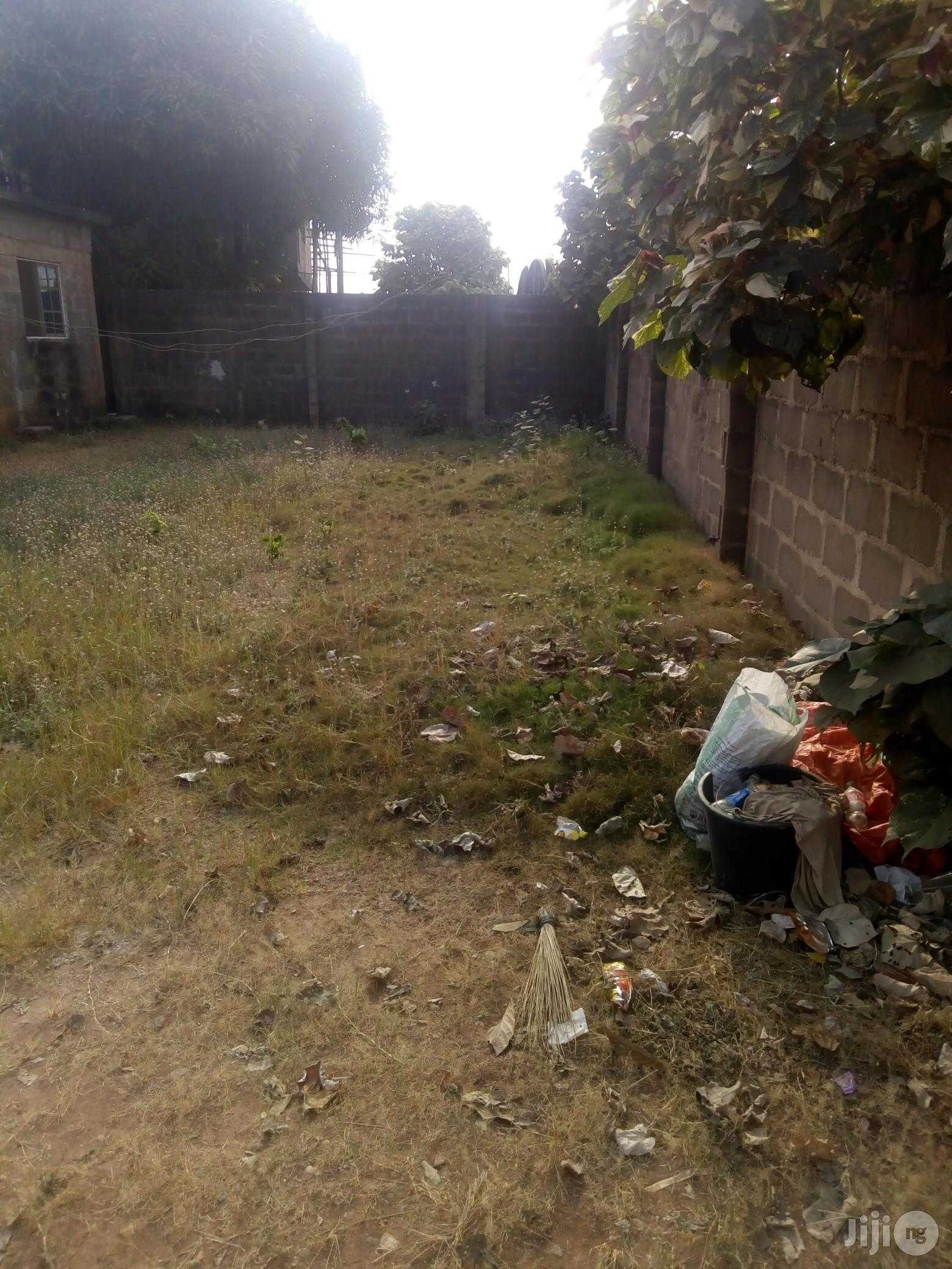 Half Plot of Land for Sale at Peace Estate Baruwa Ipaja. | Land & Plots For Sale for sale in Ipaja, Lagos State, Nigeria