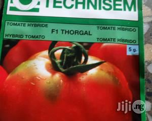 Thorgal F1 Hybrid Tomato Seed for Sale | Feeds, Supplements & Seeds for sale in Delta State, Uvwie