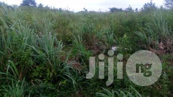 Archive: 104 Acres Of Land At Moniya,Along Ijaye/Iseyin Road With Deed Of Assig
