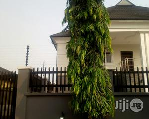 Neat 4 Bedroom Detached Duplex At Lekki Phase 2 For Rent. | Houses & Apartments For Rent for sale in Lagos State, Lekki