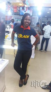 Field Sales Agent | Sales & Telemarketing CVs for sale in Lagos State, Agege