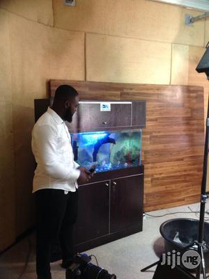 Aquarium In Lagos | Fish for sale in Lagos State, Victoria Island
