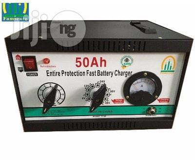 50A Famicare Battery Charger