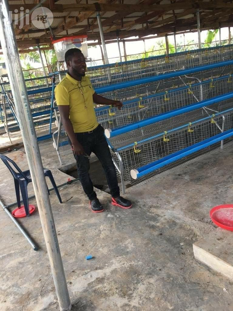 Dekoraj Farms Layers Battery Cage