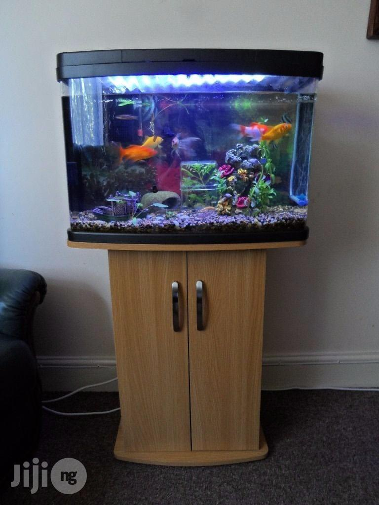 Aquariums (Designs According To Your Specifications) | Fish for sale in Garki 1, Abuja (FCT) State, Nigeria