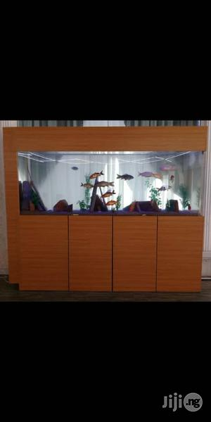 Aquariums, Wall Bubbles, Spa | Fish for sale in Abuja (FCT) State, Garki 1