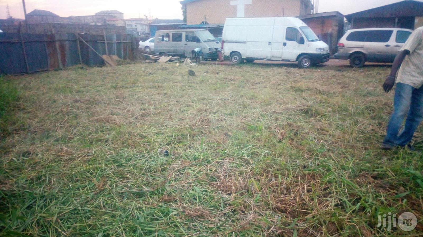 Archive: 2 Plots of Land for Sale With Receipt and Survey Plan.