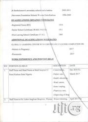 Health | Healthcare & Nursing CVs for sale in Akwa Ibom State, Abak