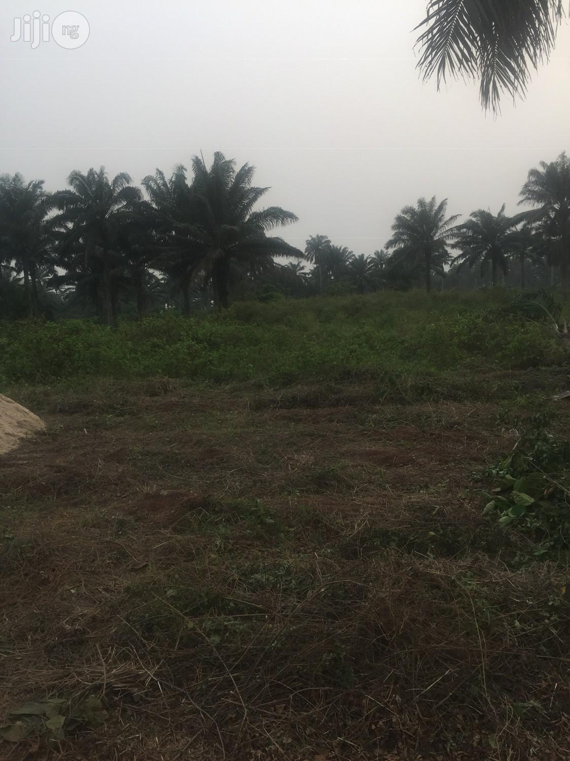 Hot Plots Of Land For Urgent Sale In Mowo (Badagry Lagos)
