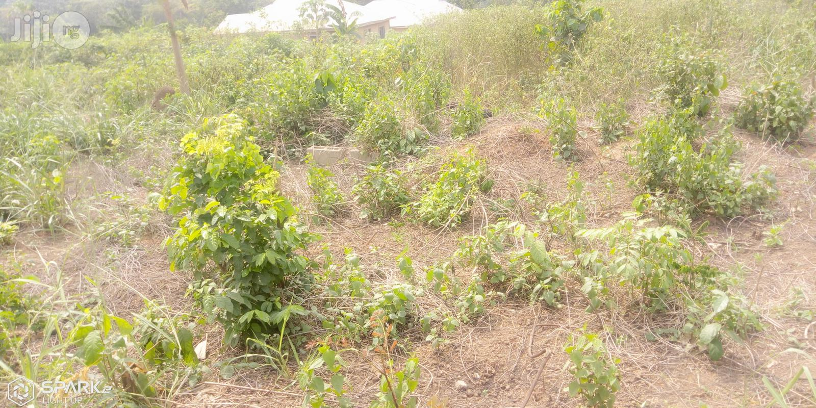 A Lovely Full Plot Of Dry Land At Magboro
