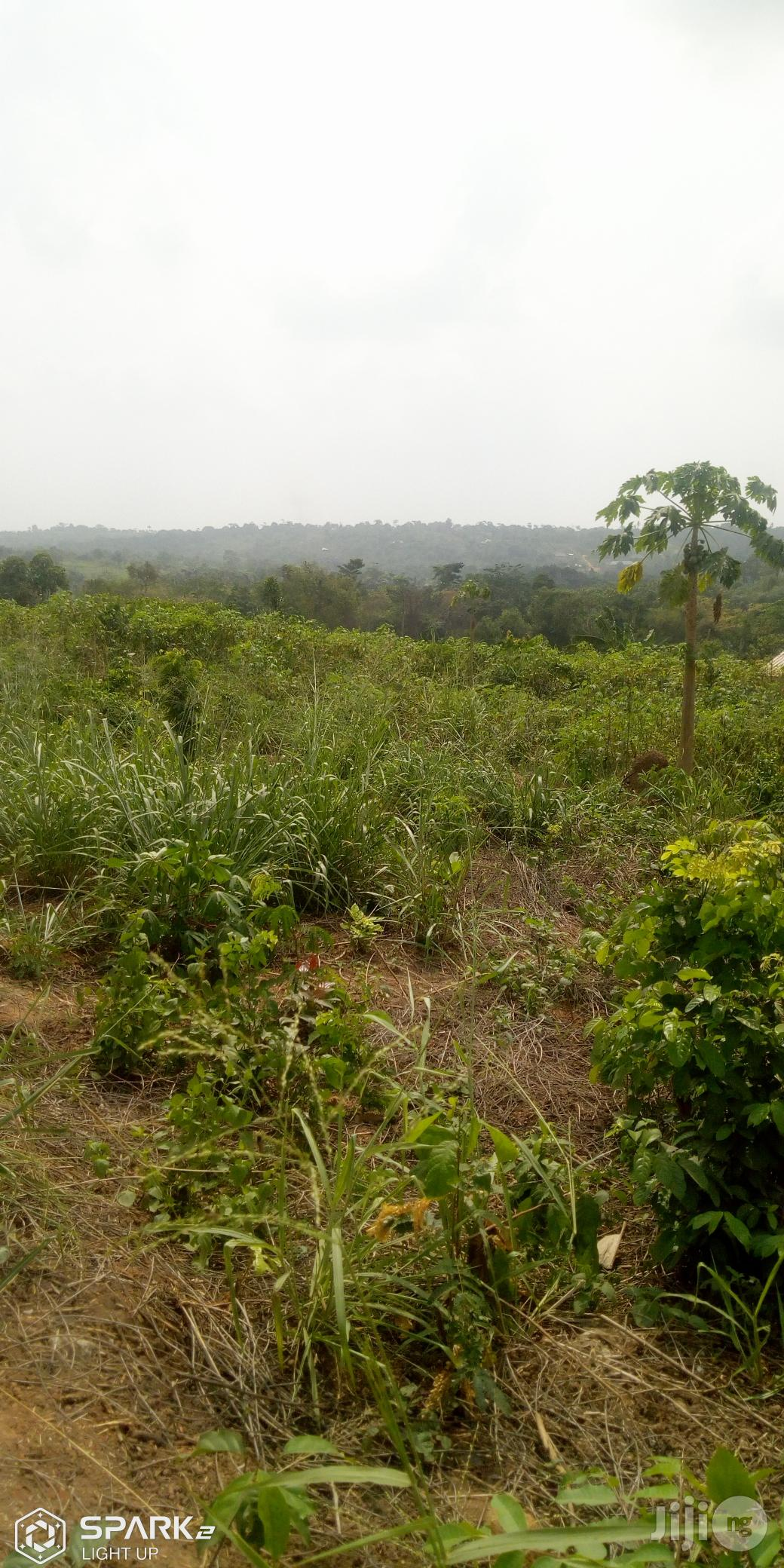 A Lovely Full Plot Of Dry Land At Magboro | Land & Plots For Sale for sale in Obafemi-Owode, Ogun State, Nigeria