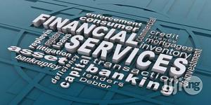 Debt Sevices   Tax & Financial Services for sale in Lagos State, Ikeja