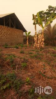 Farmland For Sale | Land & Plots For Sale for sale in Kwara State, Asa