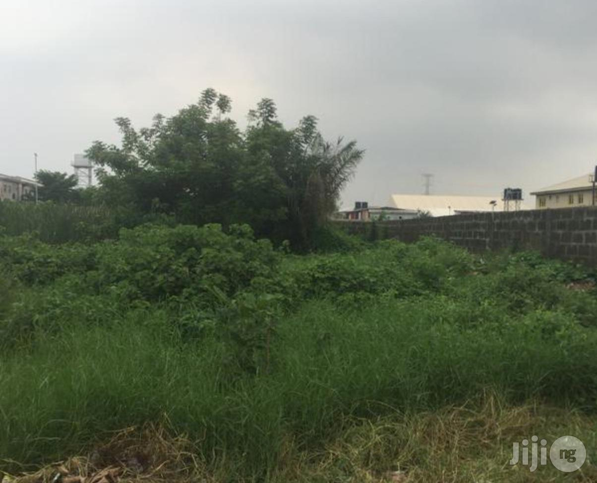 2 Plots Of Land For Sale At Ago Palace.