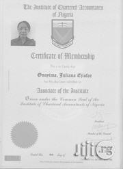 Key Account Manager Enugu | Accounting & Finance CVs for sale in Enugu State, Igbo-Eze North
