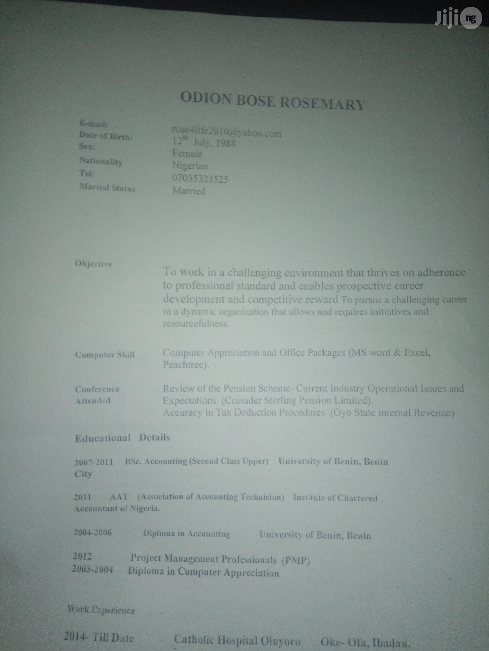 Accounts Administrator CV