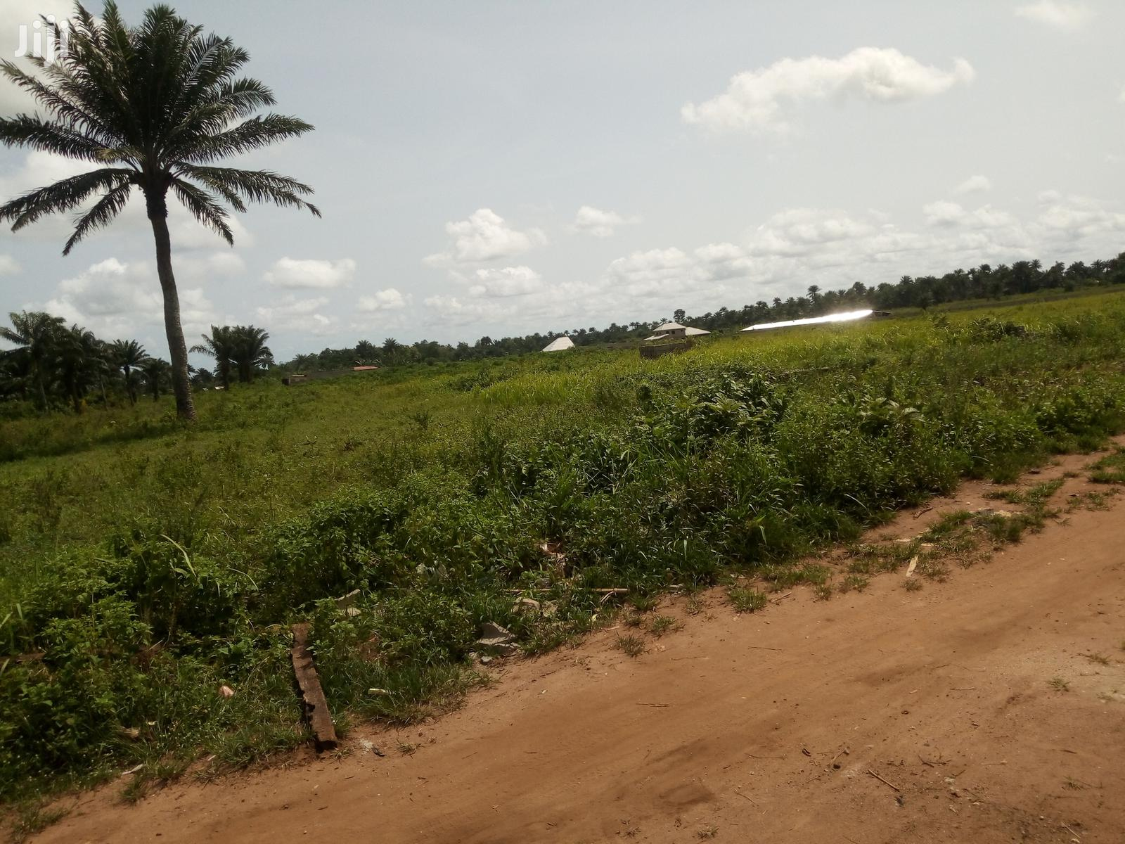 20 Acres Of Dry Land Available For Sale In Mowo (Badagry)