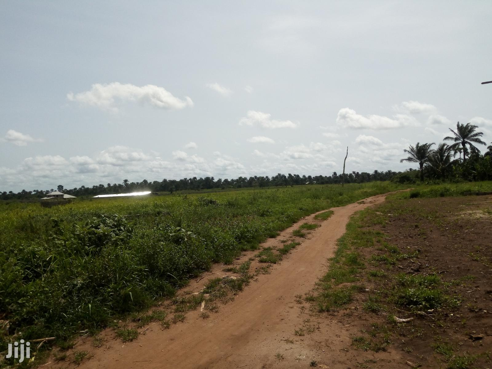 20 Acres Of Dry Land Available For Sale In Mowo (Badagry)   Land & Plots For Sale for sale in Badagry, Lagos State, Nigeria