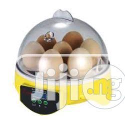 Archive: 7 Eggs Incubator