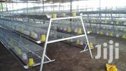 Brooding Cage   Farm Machinery & Equipment for sale in Oyo State, Akinyele