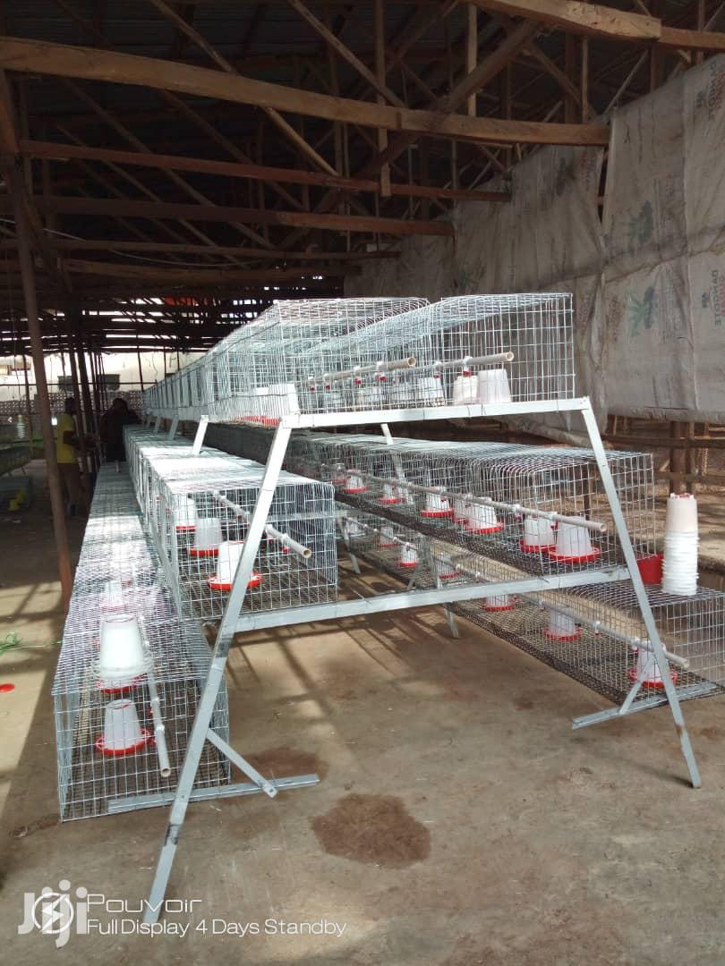 Rearing Auto Battery Cage For Days Old Birds