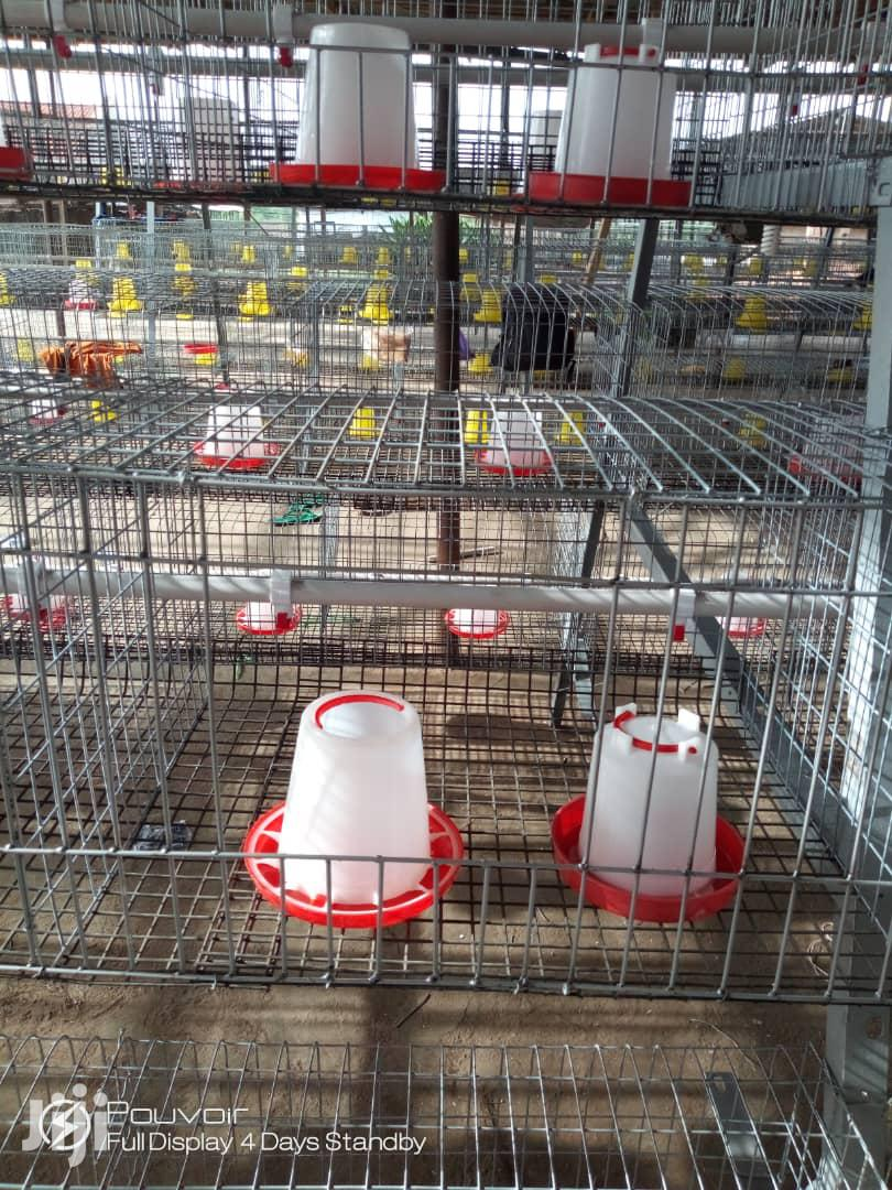Rearing Auto Battery Cage For Days Old Birds   Farm Machinery & Equipment for sale in Ido, Oyo State, Nigeria