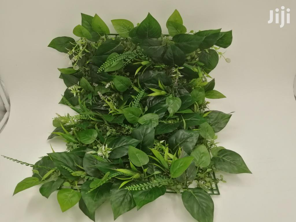 Quality Cheap Wall Plants For Sales