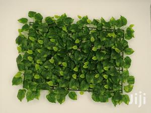 Get Quality Wall Plants For Decoration | Garden for sale in Abia State, Umuahia