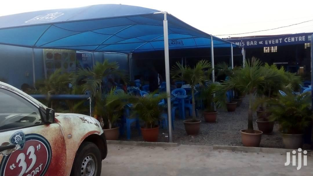 Large 7 Durable Indoor/Outdoor Canopy.