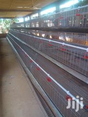 Battery Cage   Farm Machinery & Equipment for sale in Oyo State, Akinyele