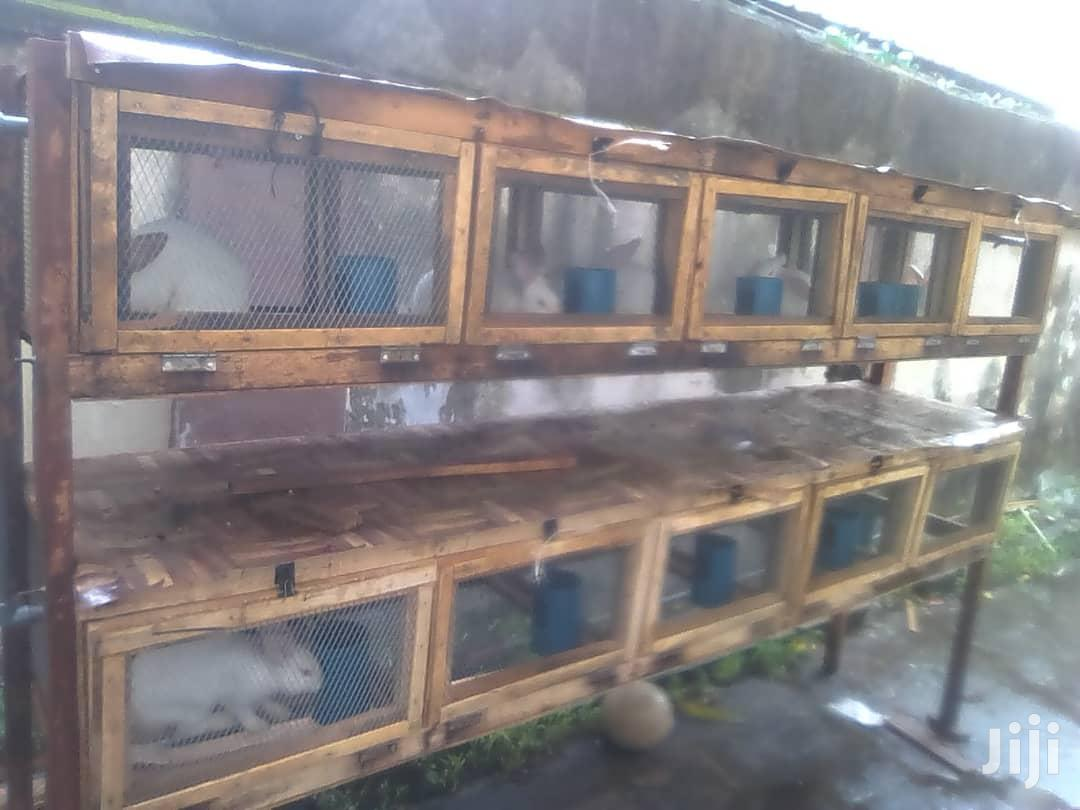 Rabbit Cage And Accessories | Pet's Accessories for sale in Ikorodu, Lagos State, Nigeria