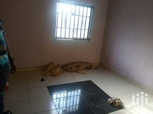 A Mini Flat | Houses & Apartments For Rent for sale in Lagos State, Surulere