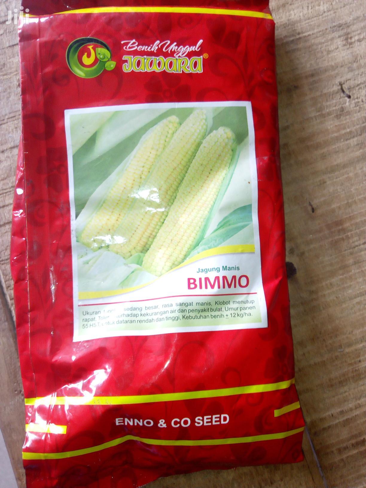 Archive: 250g Bimmo Sweet Corn Seed