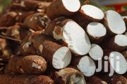 Fresh Cassava | Feeds, Supplements & Seeds for sale in Lagos State, Mushin