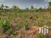 Agricultural and Commercial Land for Sale | Land & Plots For Sale for sale in Oyo State, Lagelu